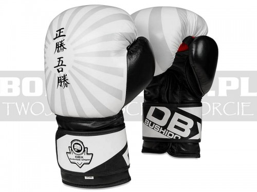 B-2v8-gloves-boxing-leather-japan-white-1.jpg